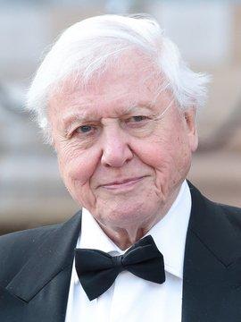 Sir David Attenborough Headshot