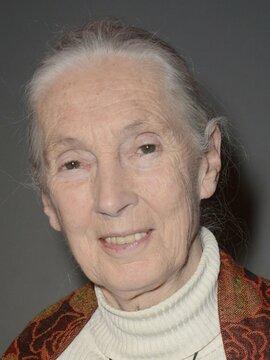 Jane Goodall Headshot