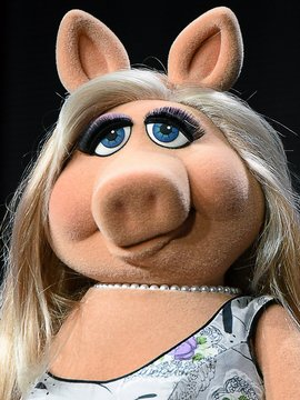 Miss Piggy Headshot