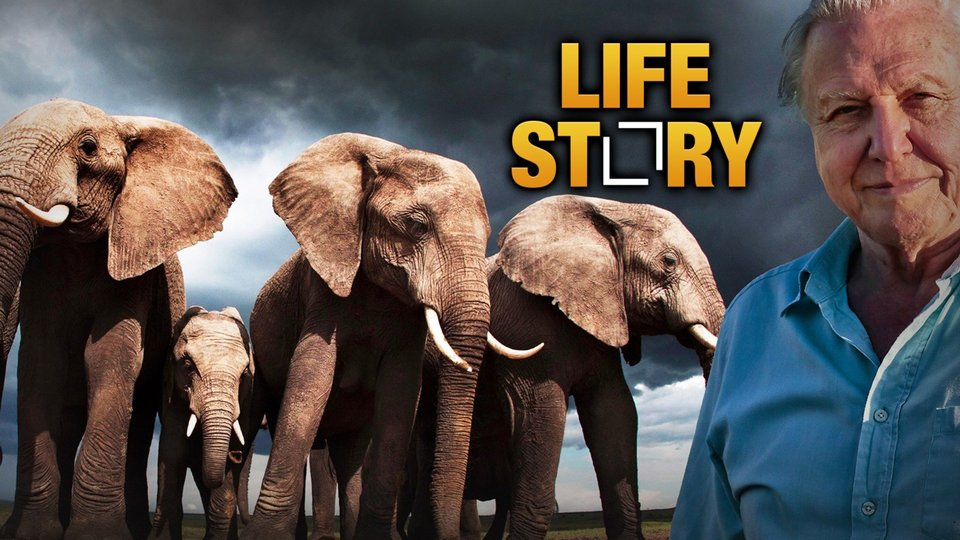 Life Story - Discovery Channel
