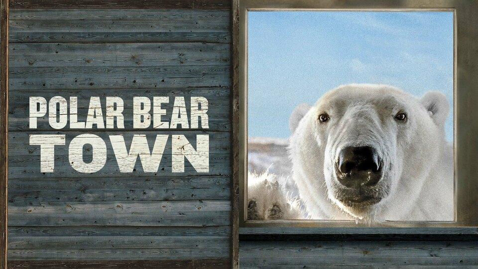 Polar Bear Town - Smithsonian Channel