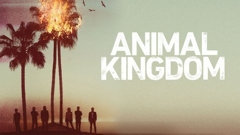 Animal Kingdom - TNT