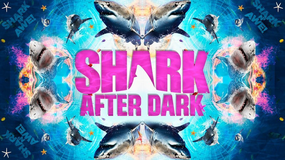 Shark After Dark - Discovery Channel