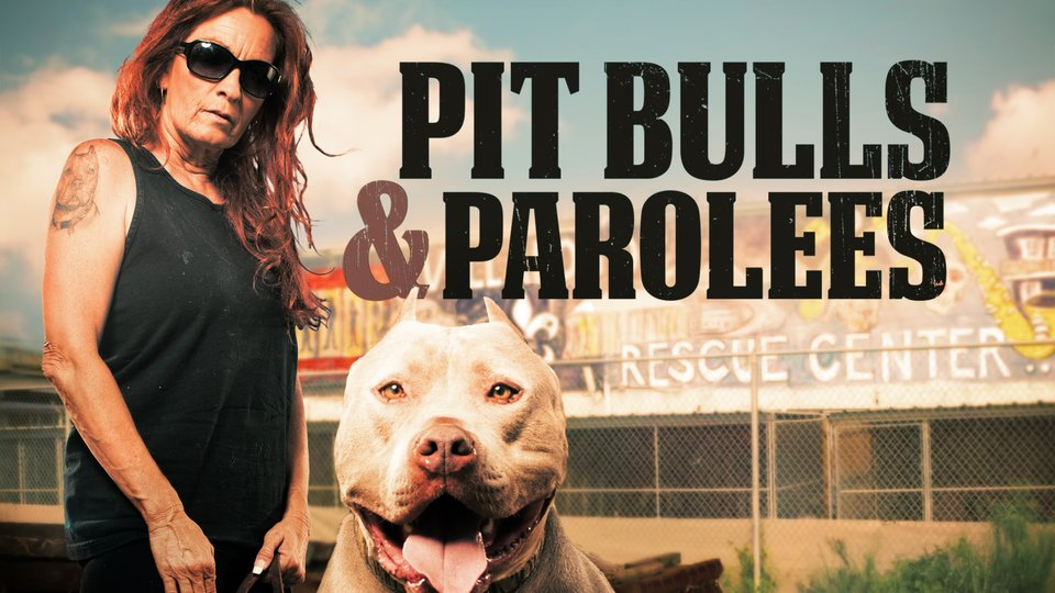 Pit Bulls and Parolees (Animal Planet)