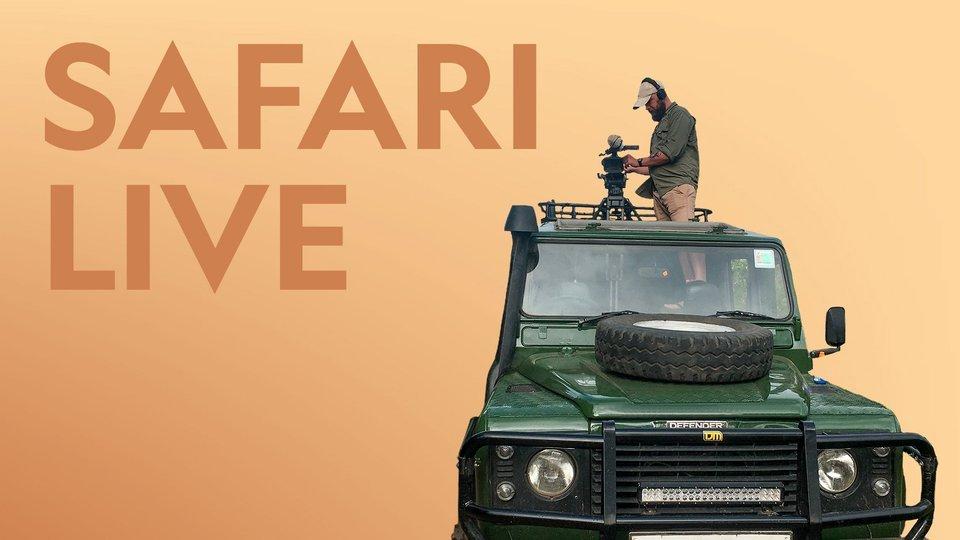 Safari Live (Nat Geo Wild)