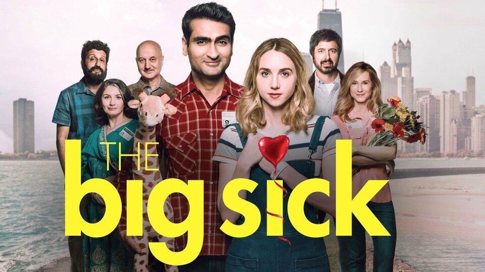 The Big Sick ()