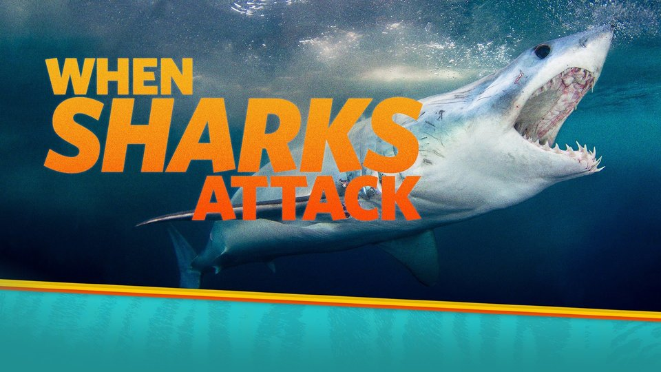 When Sharks Attack - Nat Geo