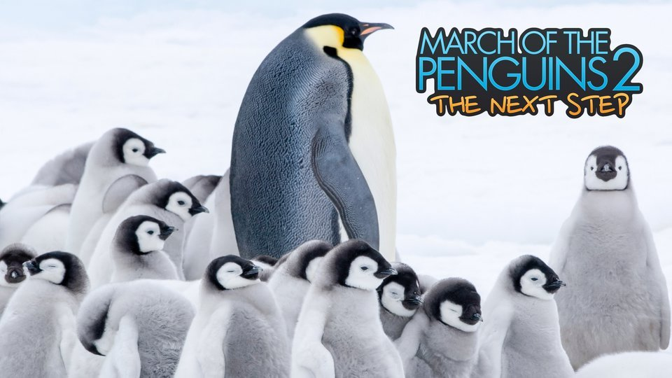 March of the Penguins 2: The Next Step ()