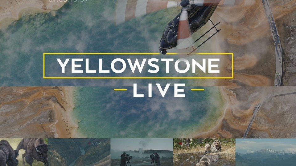 Yellowstone Live - Nat Geo