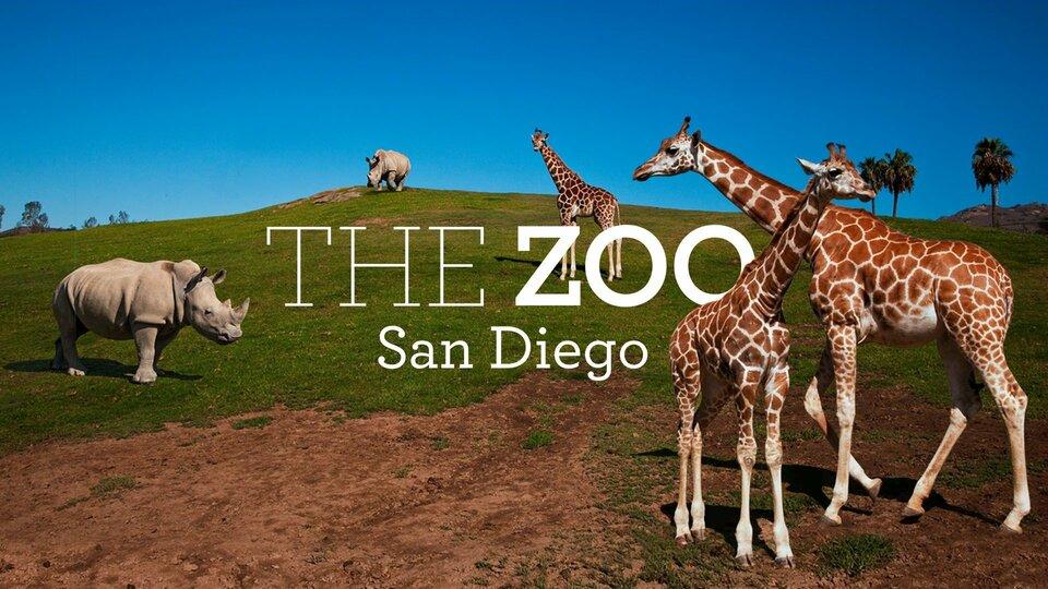 The Zoo: San Diego - Animal Planet
