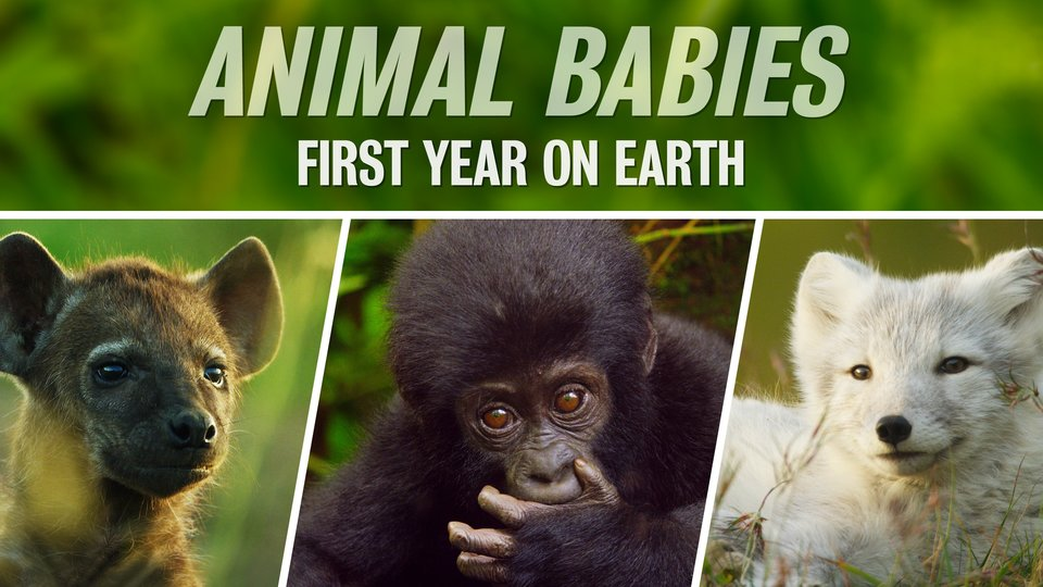 Animal Babies: First Year on Earth (PBS)