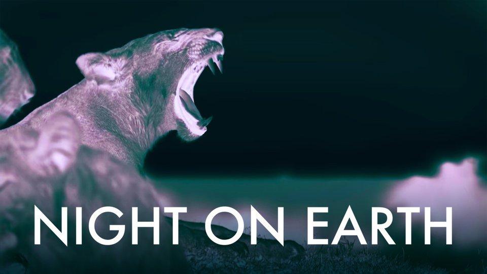Night on Earth (Netflix)