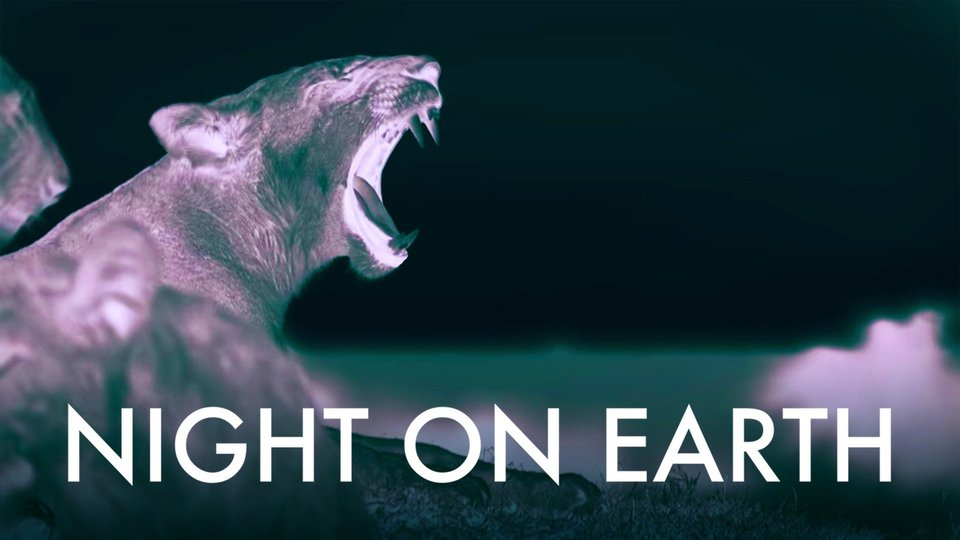 Night on Earth - Netflix