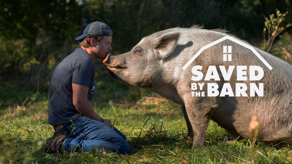 Saved By The Barn - Animal Planet