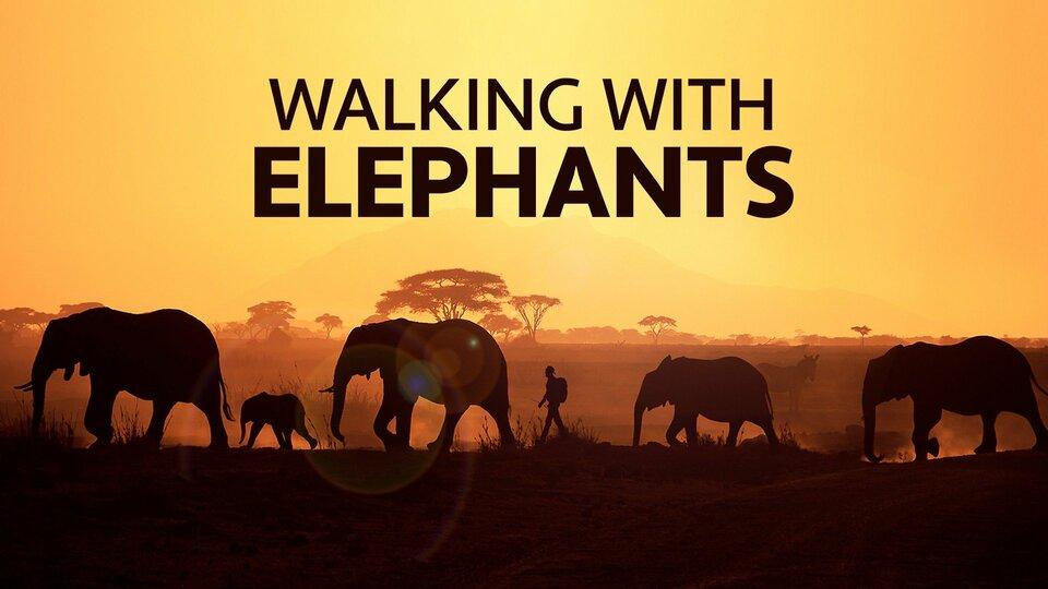 Walking With Elephants - Animal Planet