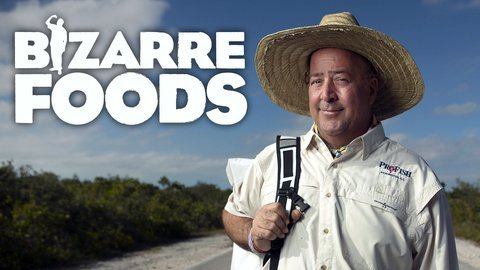 Bizarre Foods with Andrew Zimmern (Travel Channel)