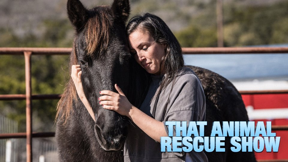 That Animal Rescue Show - Paramount+