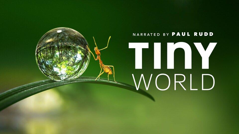 Tiny World - Apple TV+