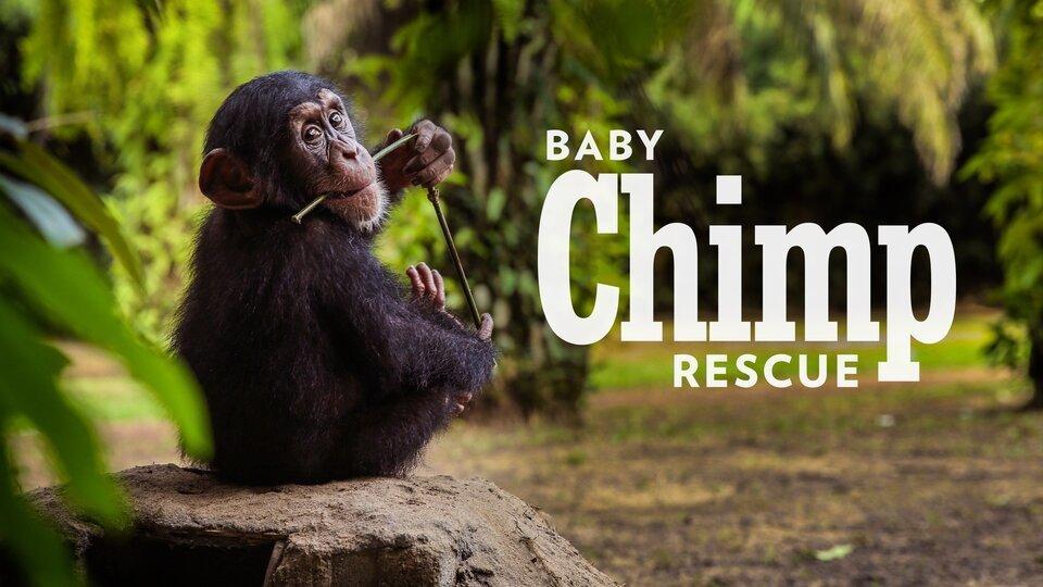 Baby Chimp Rescue - BBC America