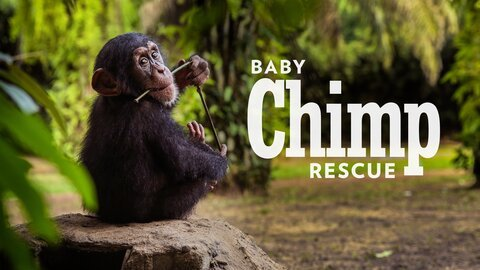 Baby Chimp Rescue (BBC America)