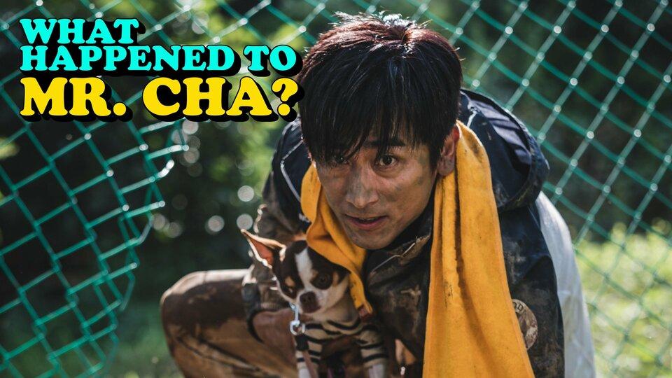 What Happened to Mr. Cha? - Netflix
