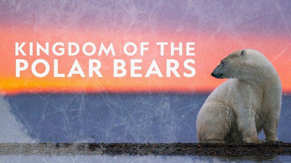 Kingdom of the Polar Bears - Nat Geo Wild