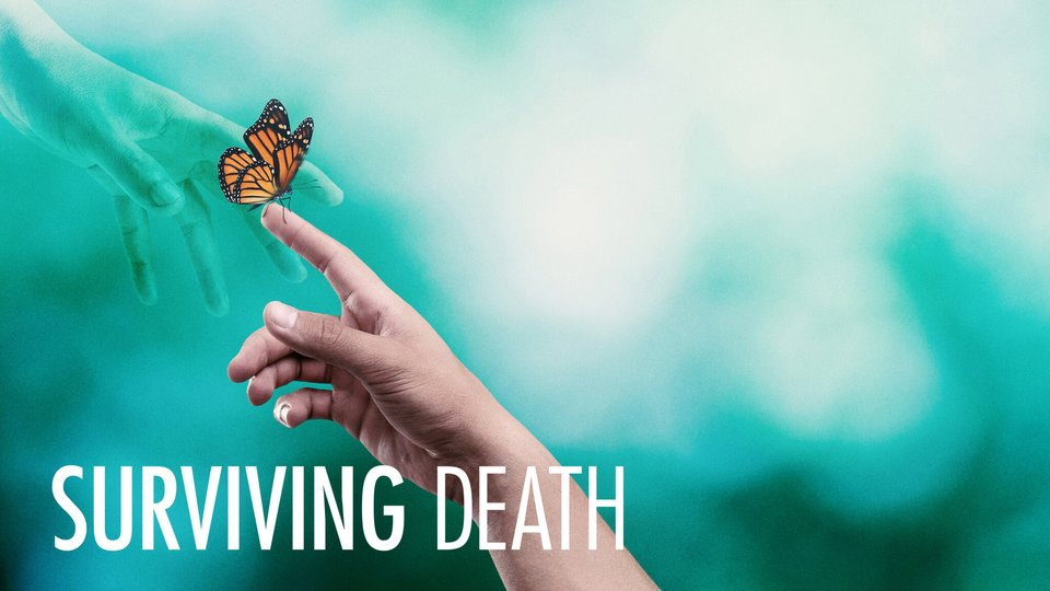Surviving Death - Netflix