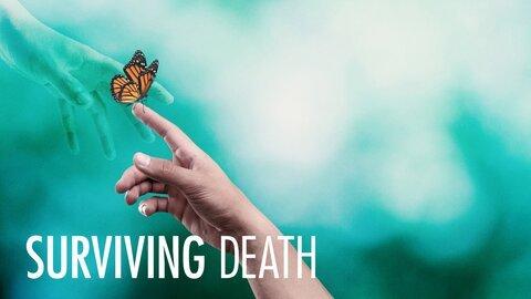 Surviving Death (Netflix)