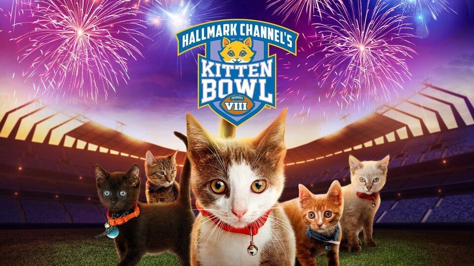 Kitten Bowl - Hallmark Channel