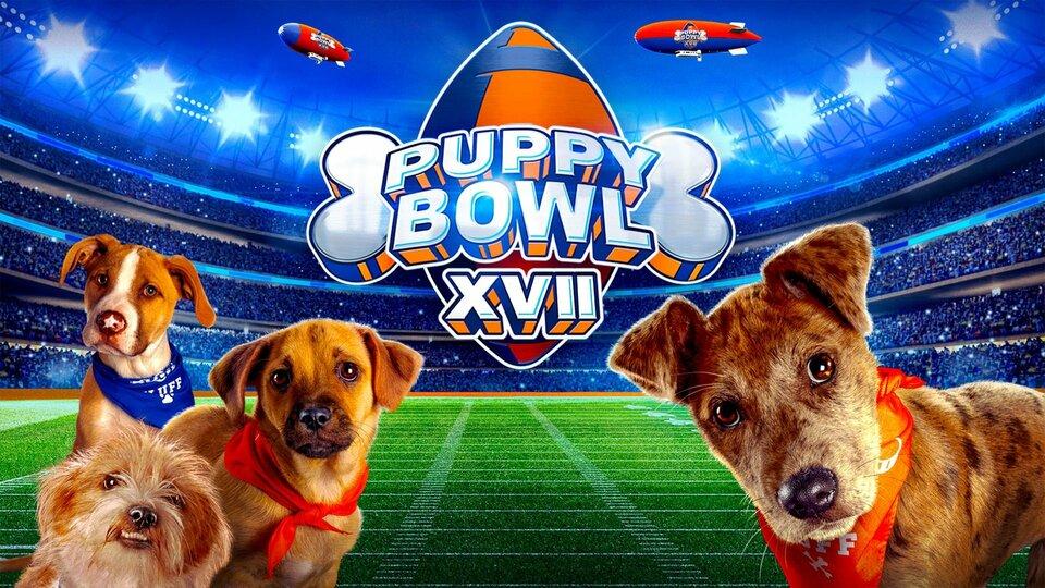 Puppy Bowl - Animal Planet