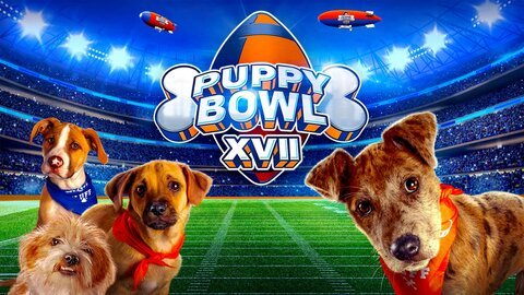 Puppy Bowl - Animal Planet