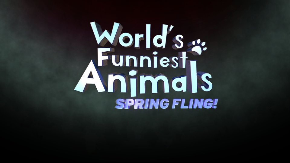 World's Funniest Animals: Spring Fling - The CW