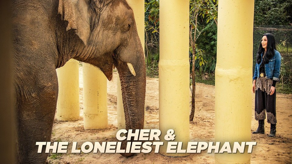 Cher & the Loneliest Elephant - Paramount+