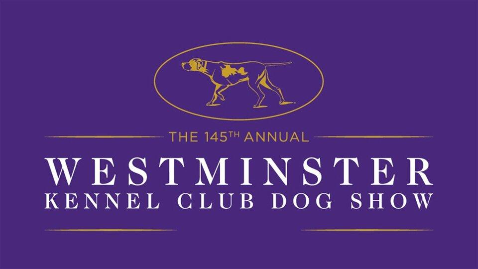 Westminster Kennel Club Dog Show - Fox Sports 1