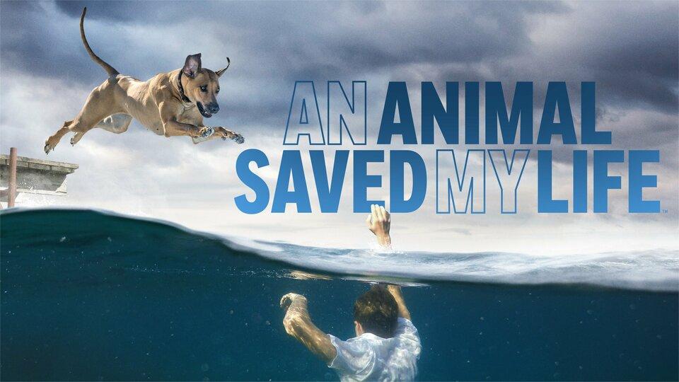 An Animal Saved My Life - A&E