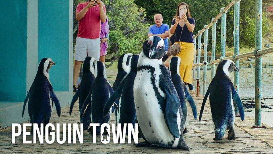 Penguin Town - Netflix