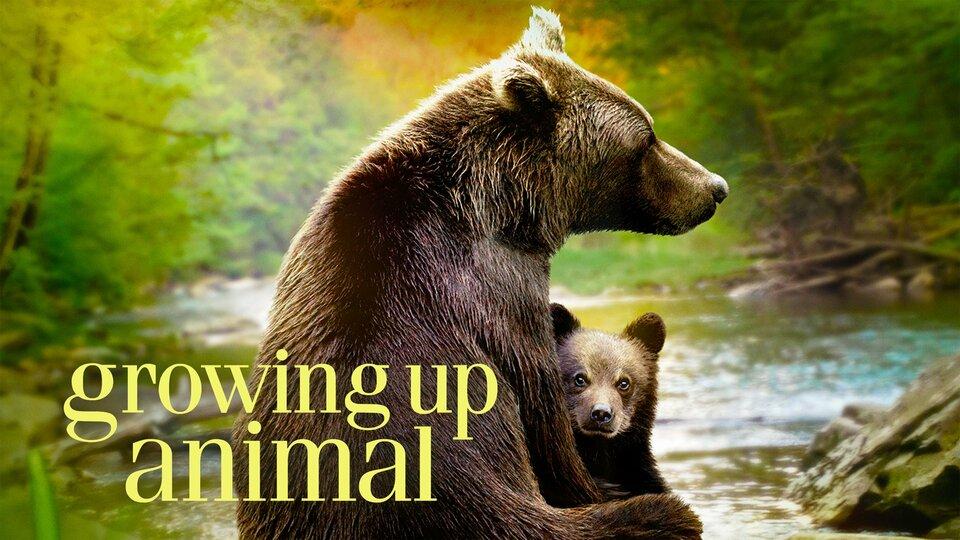 Growing Up Animal - Disney+