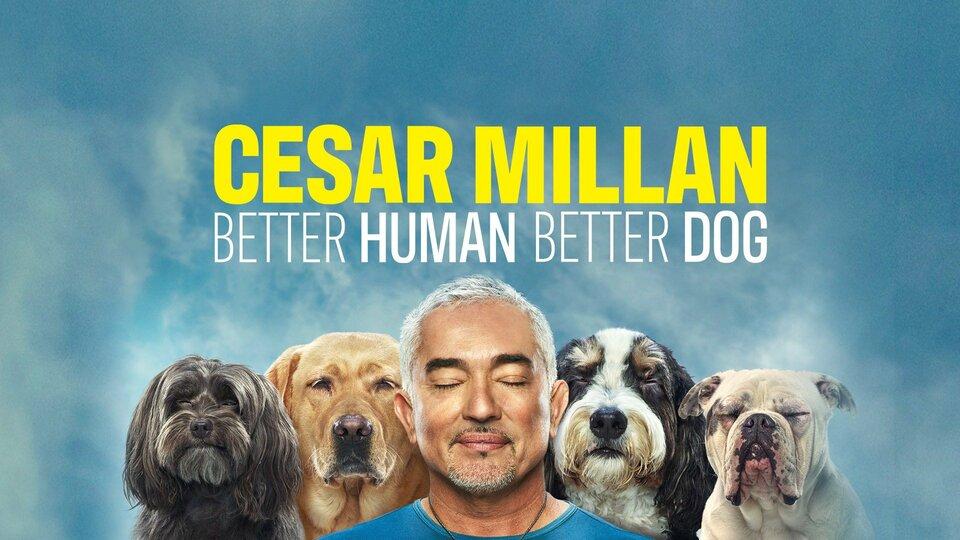 Cesar Millan: Better Human Better Dog - Nat Geo