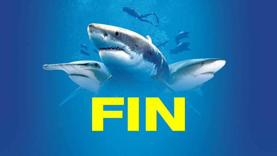 Fin - Discovery+