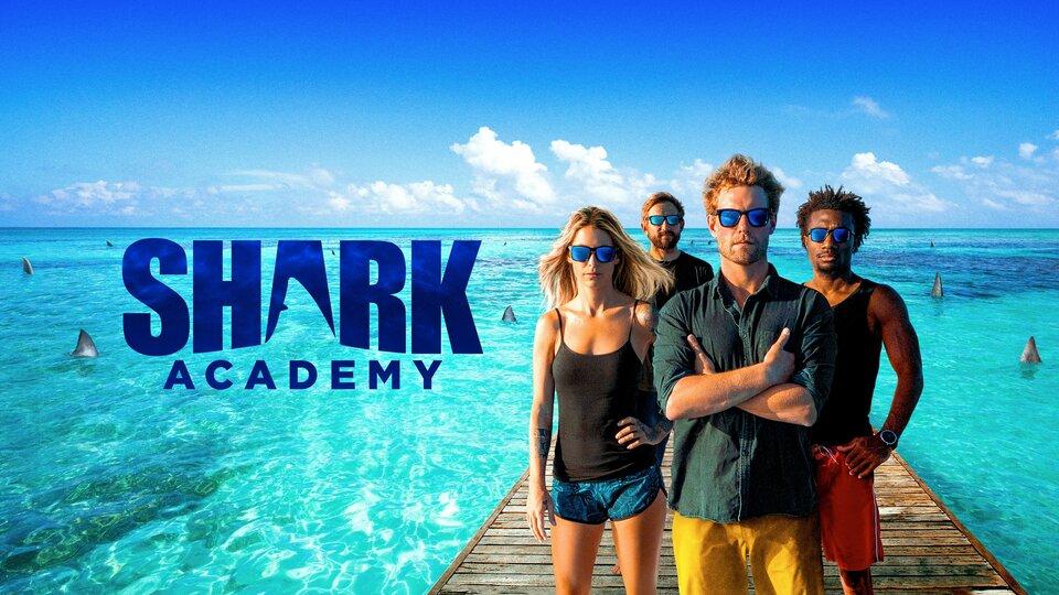 Shark Academy - Discovery+