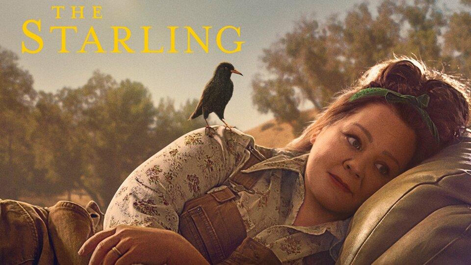 The Starling - Netflix
