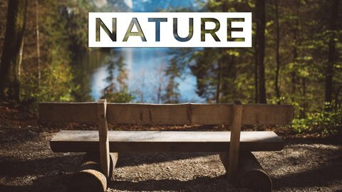 Nature - PBS