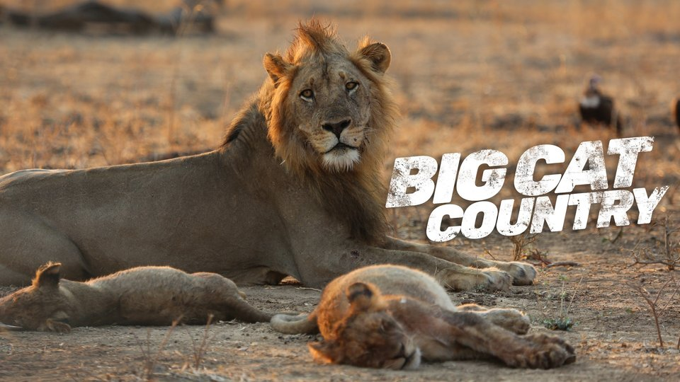 Big Cat Country - Smithsonian Channel