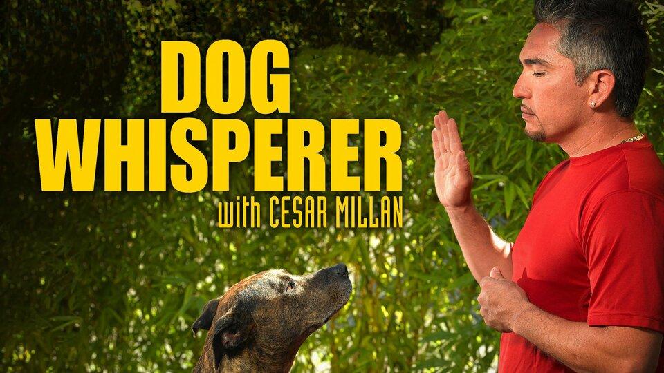 Dog Whisperer - Nat Geo